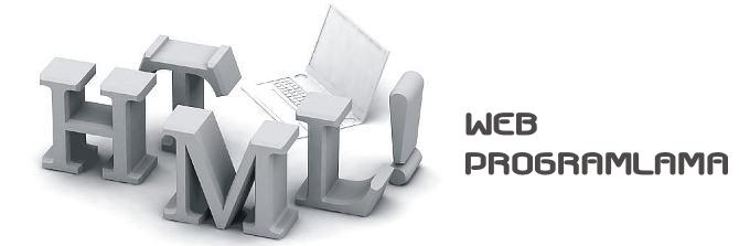 Web programlama web tasarım e ticaret sistemleri seo arama motoru